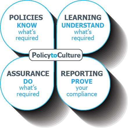 The Innovative Framework